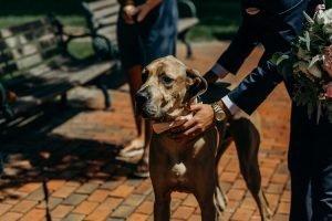 HINES HILL SUMMER WEDDING | KYLE + ELIZABETH 43