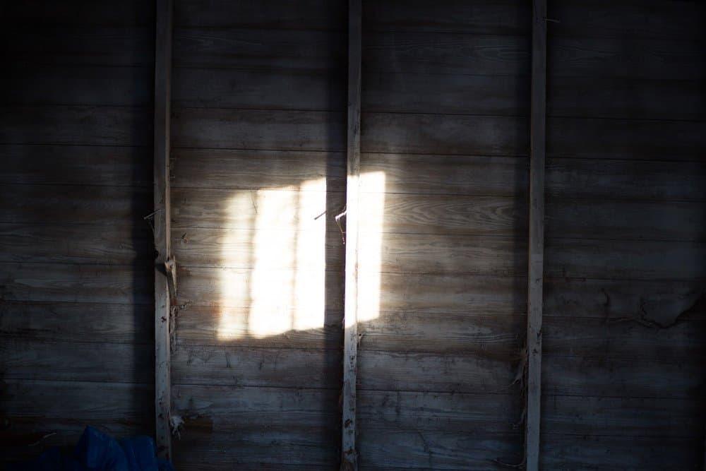 SEEING THE LIGHT 3