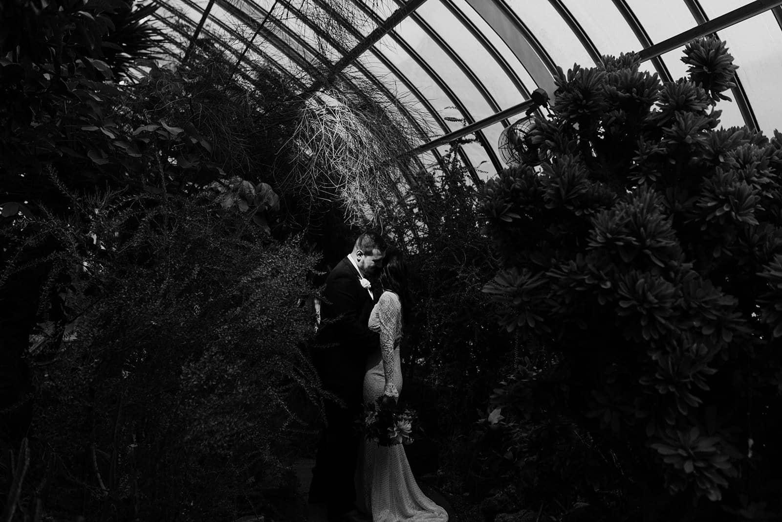 spotlight on newly wed couple