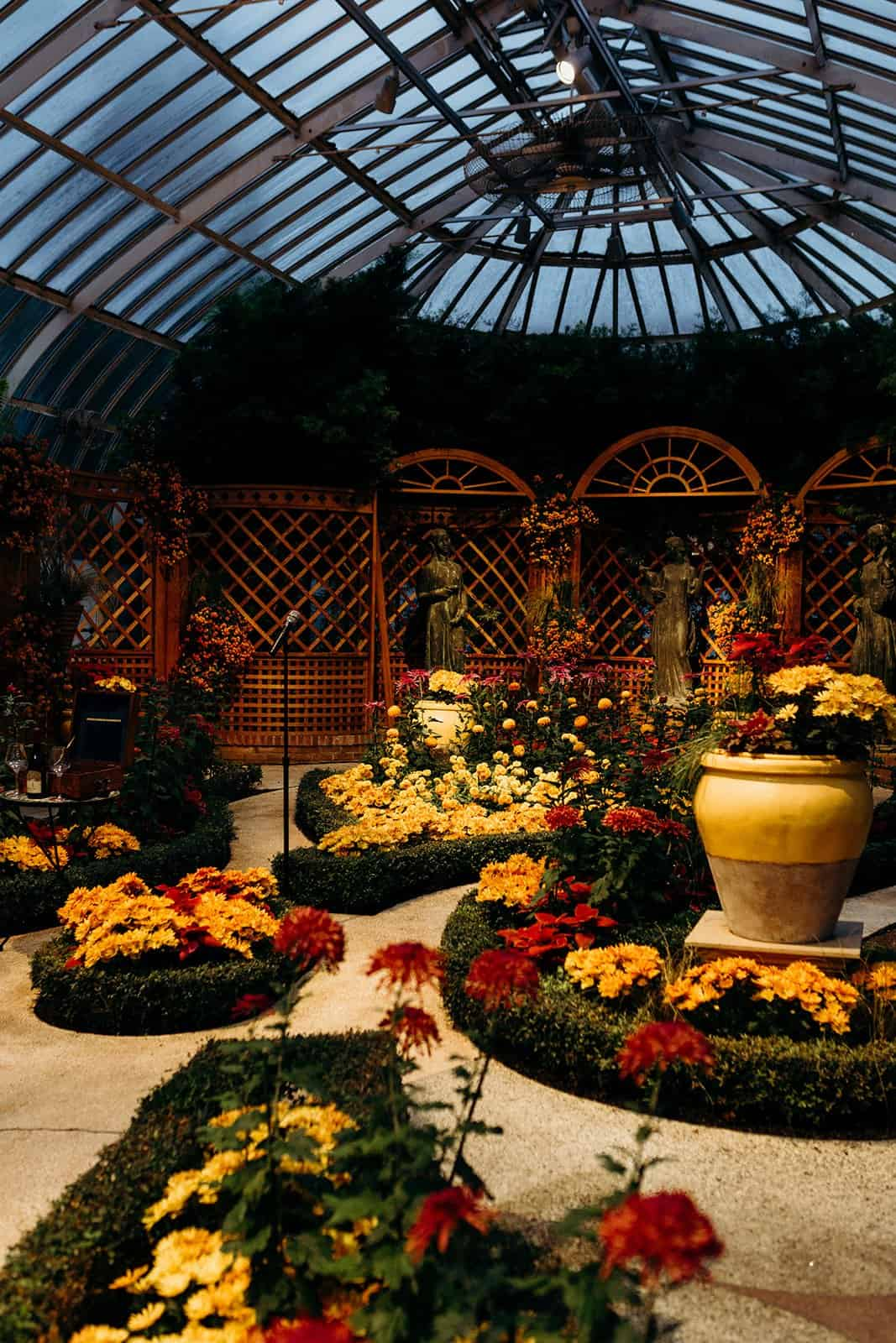 greenhouse with flowers and plants