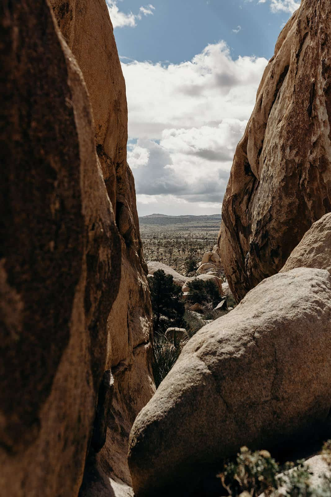 View from climb in Joshua Tree National Park