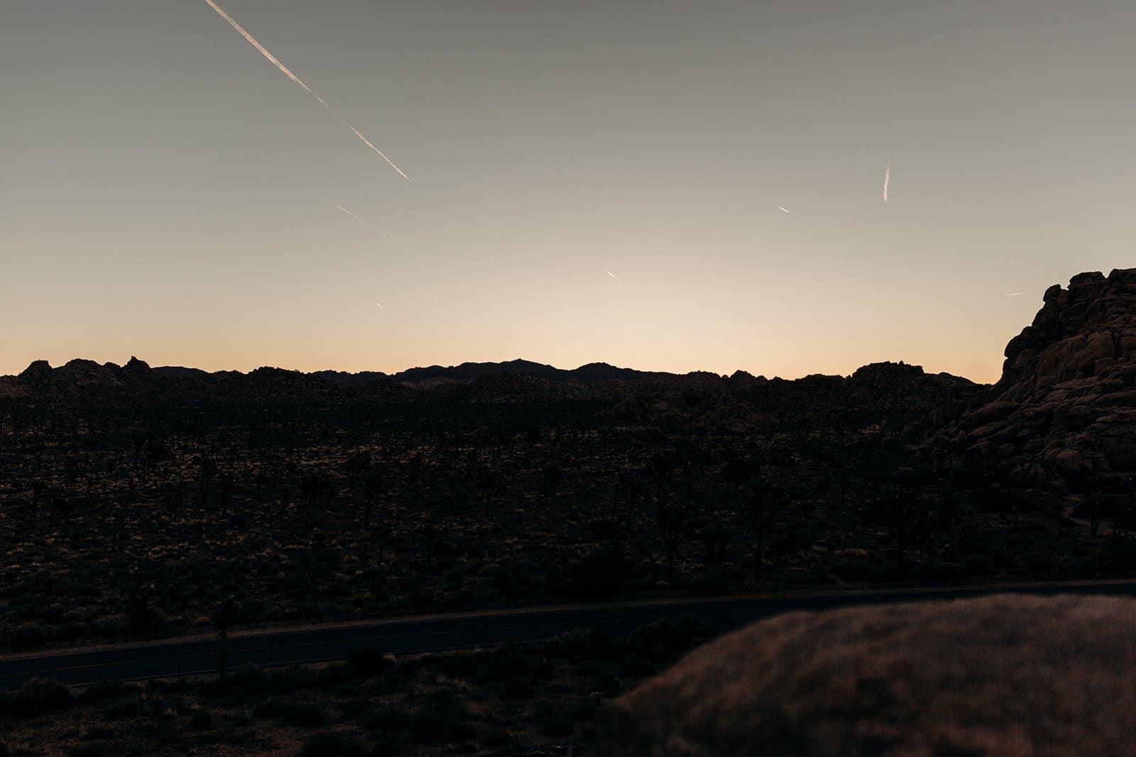 joshua tree sunrise silhouette