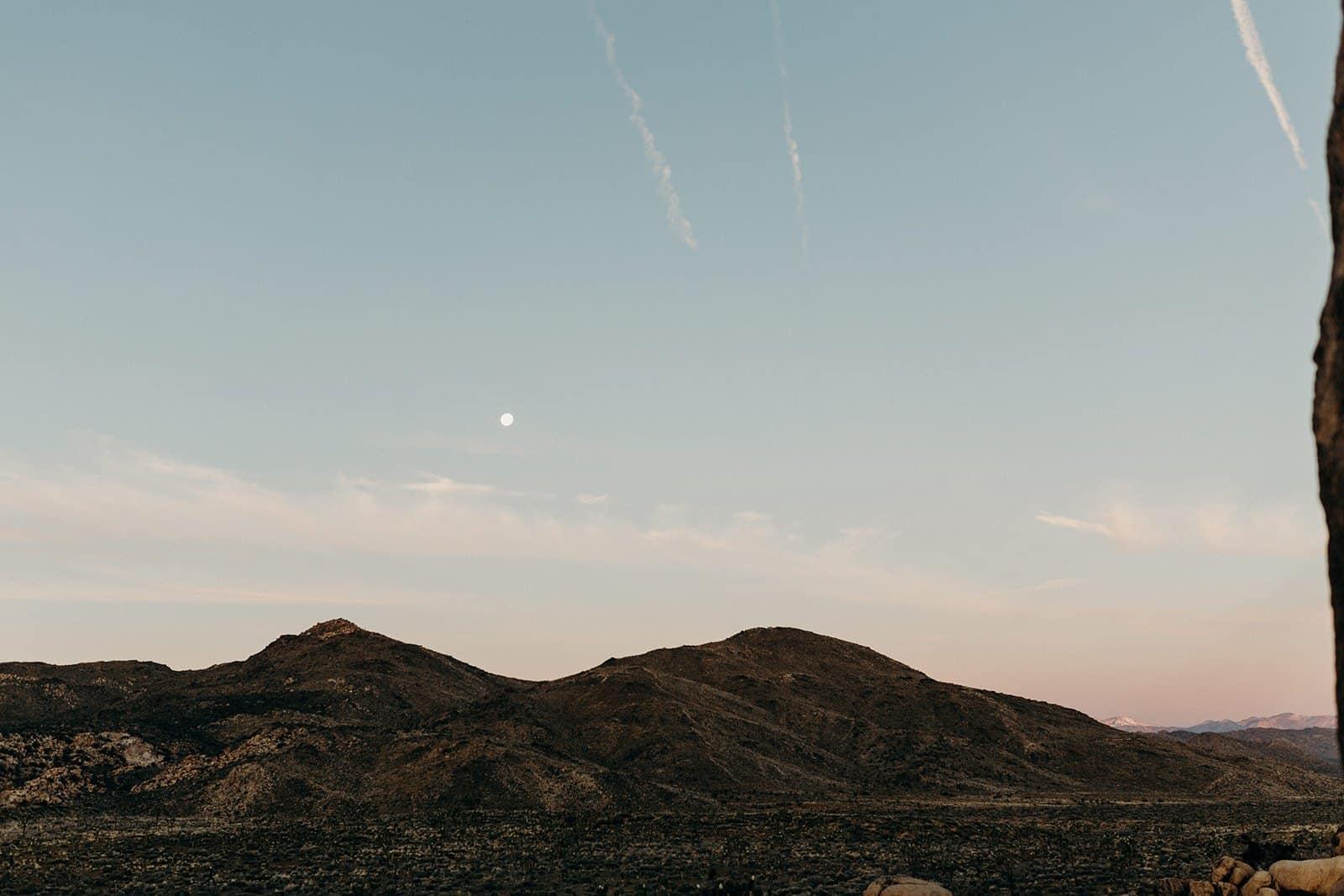 landscape of pastel joshua tree sunrise with moon