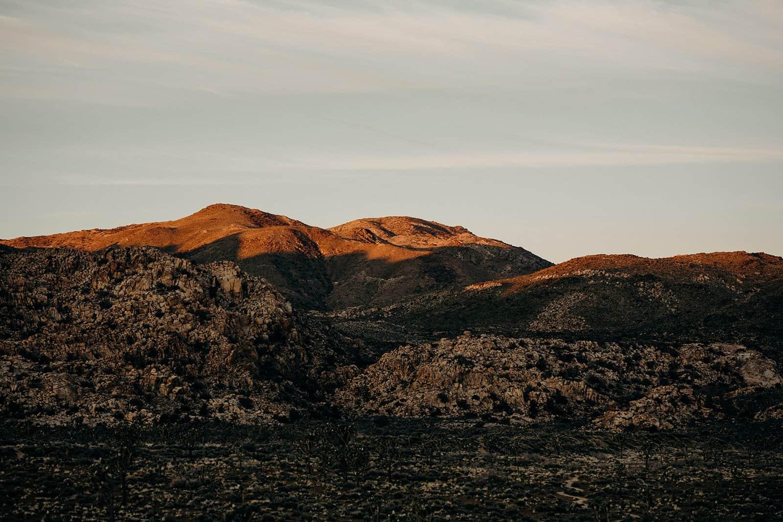 sunrise in Joshua Tree