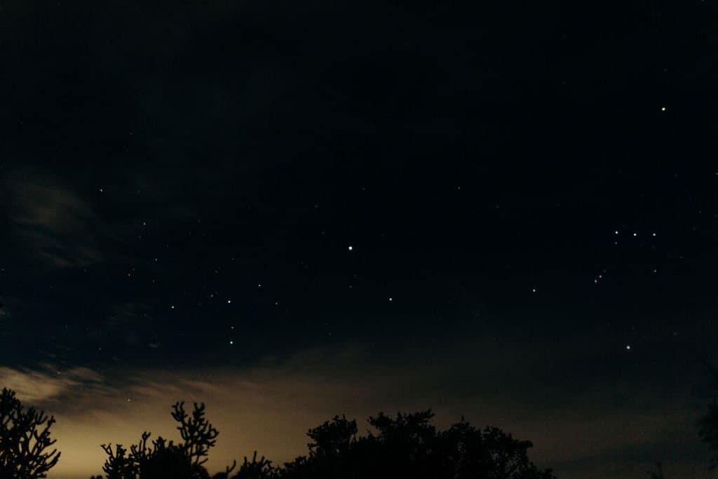 stars in night sky of Joshua Tree