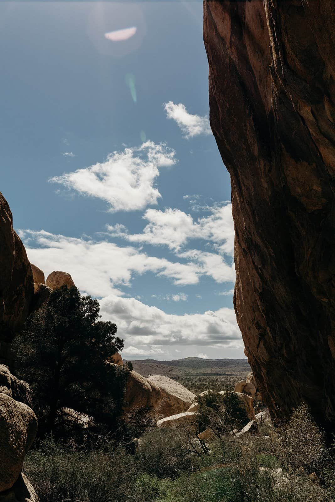 mid day overlooking Joshua Tree National Park