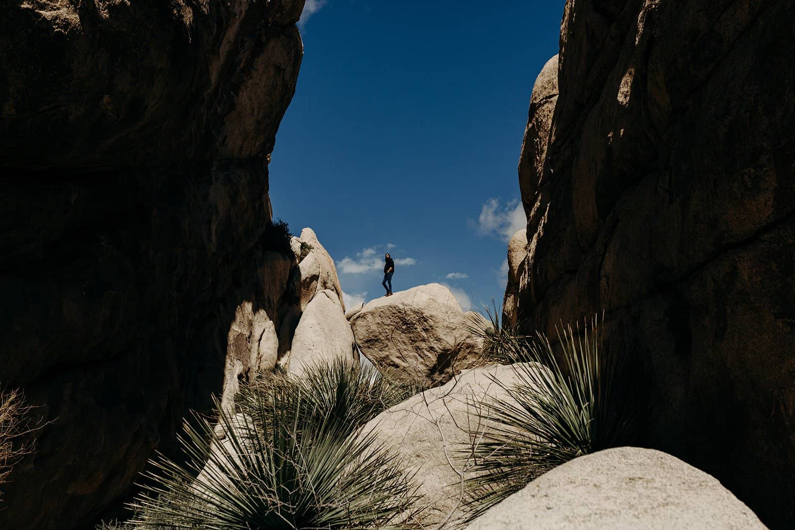 man on top of boulder in joshua tree national park