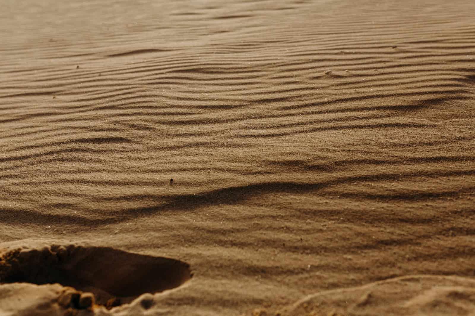 Ohio Sand Dunes Engagement   Addison + Morgan 82