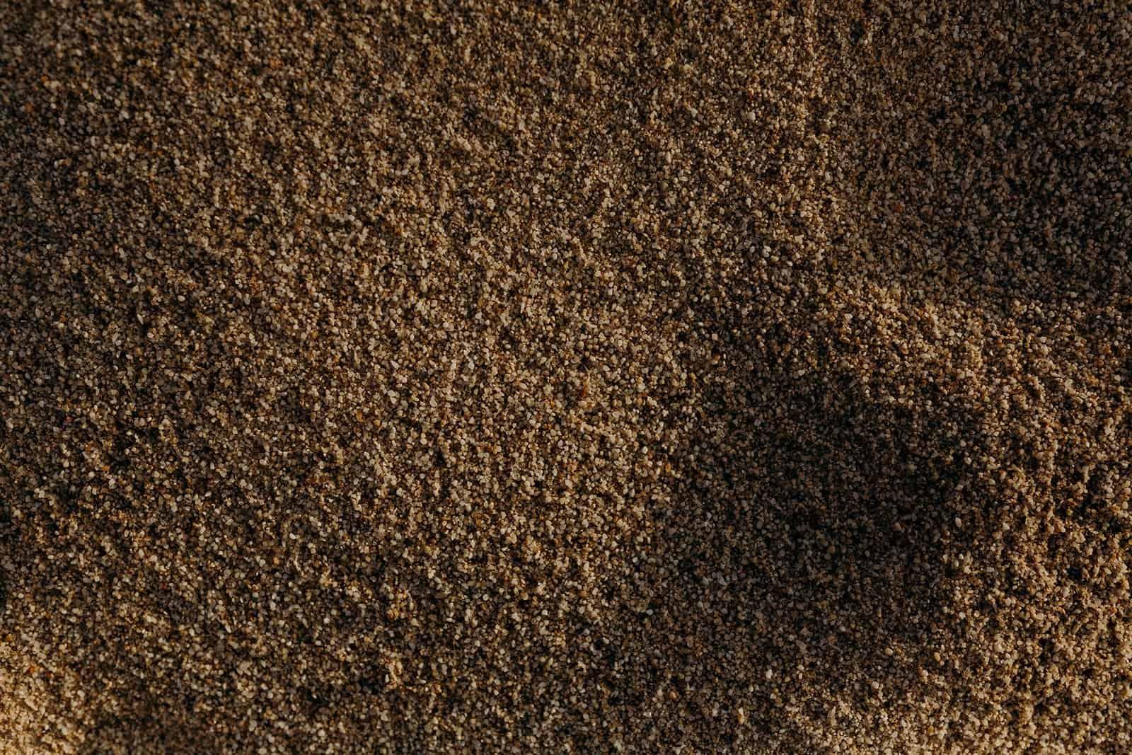 Ohio Sand Dunes Engagement   Addison + Morgan 87